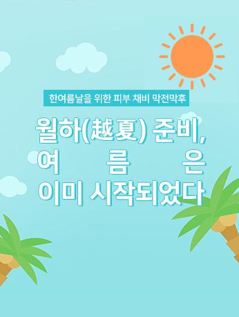 웹진 이미지